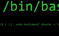 Centos系统提示-bash: make: command not found的解决方案